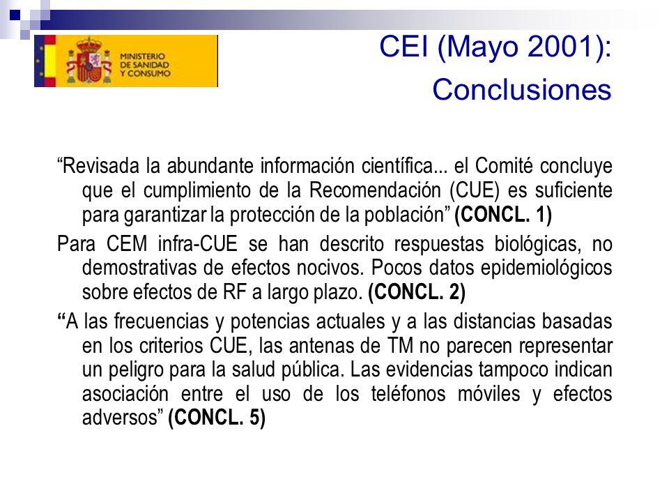 CEI (Mayo 2001): Conclusiones