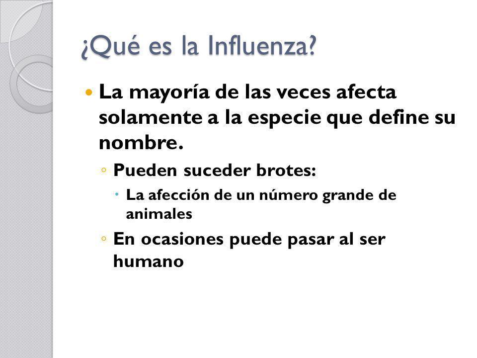 ¿Qué es la Influenza La mayoría de las veces afecta solamente a la especie que define su nombre.