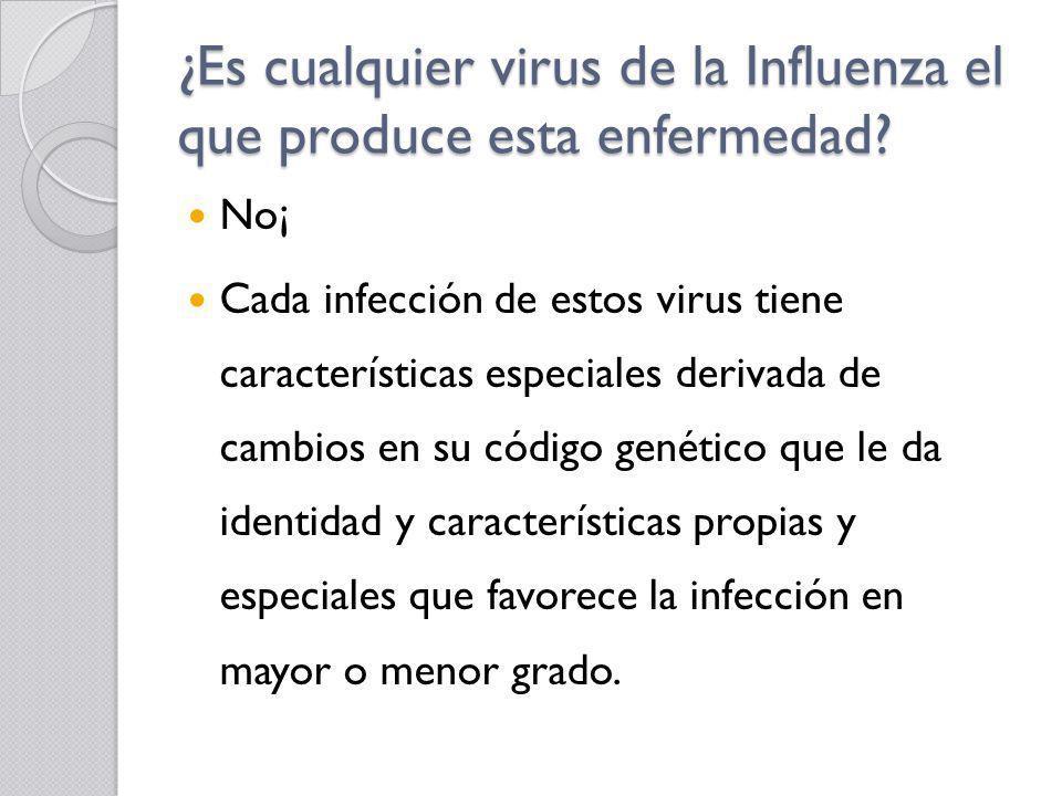 ¿Es cualquier virus de la Influenza el que produce esta enfermedad