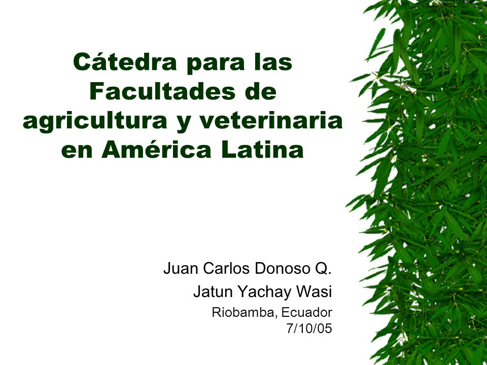 Juan Carlos Donoso Q. Jatun Yachay Wasi Riobamba, Ecuador 7/10/05
