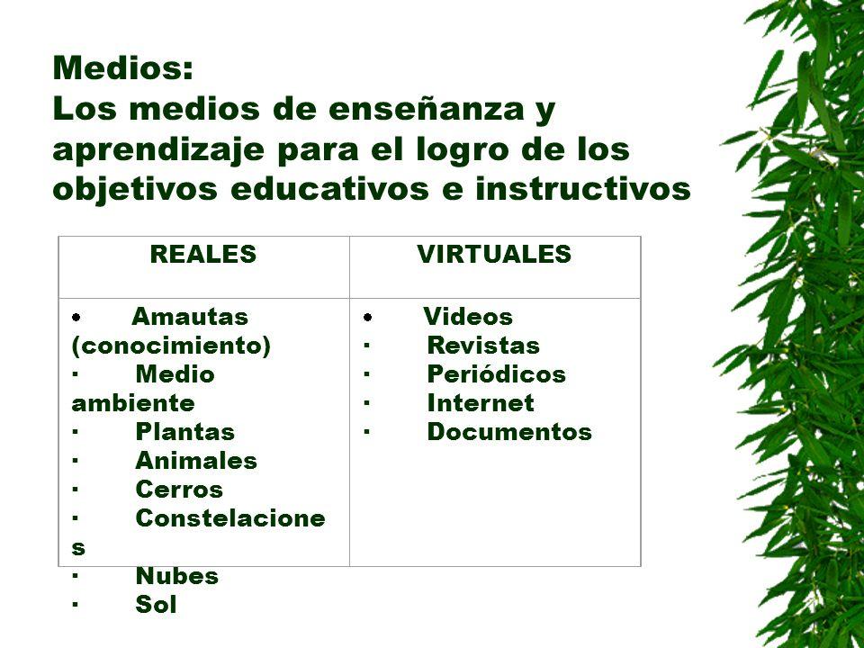 Medios: Los medios de enseñanza y aprendizaje para el logro de los objetivos educativos e instructivos.
