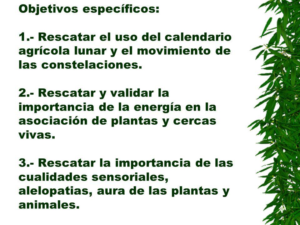 Objetivos específicos: 1