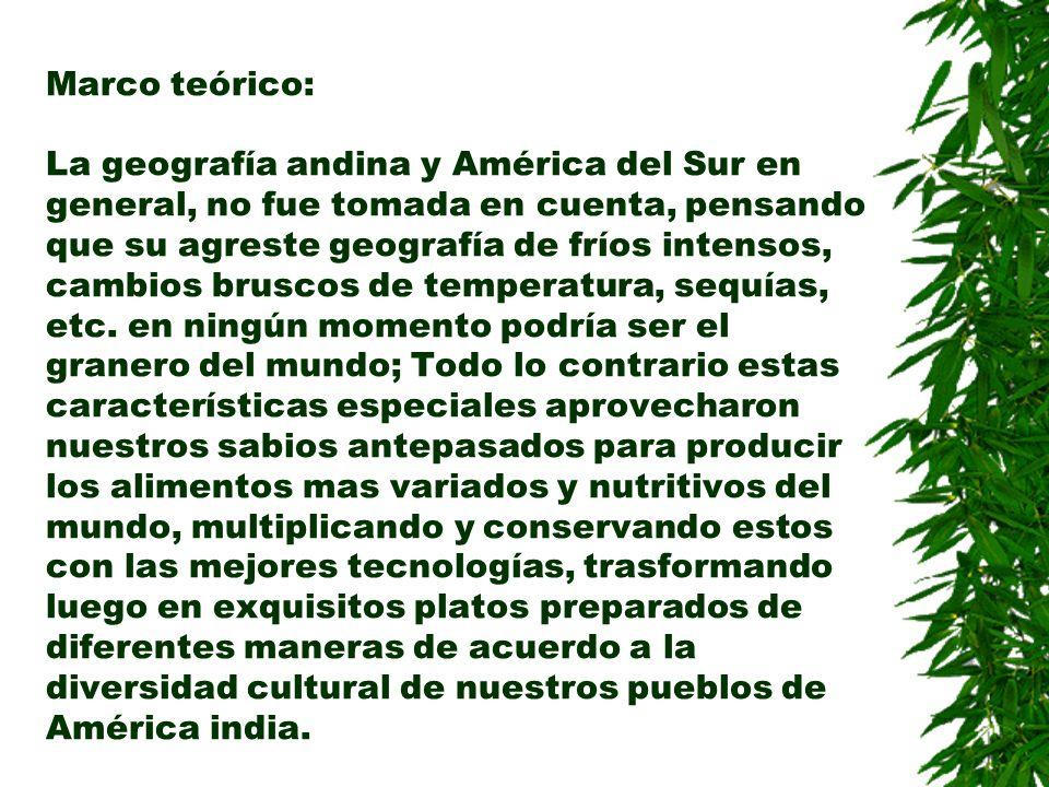 Marco teórico: La geografía andina y América del Sur en general, no fue tomada en cuenta, pensando que su agreste geografía de fríos intensos, cambios bruscos de temperatura, sequías, etc.