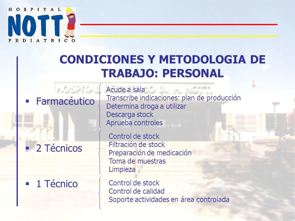 CONDICIONES Y METODOLOGIA DE TRABAJO: PERSONAL