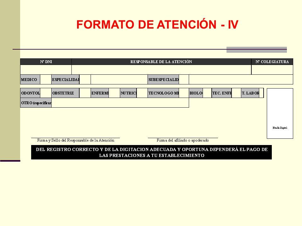 FORMATO DE ATENCIÓN - IV