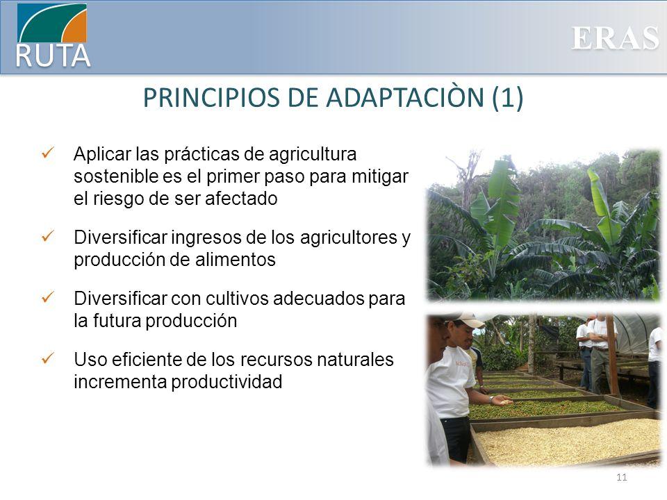 PRINCIPIOS DE ADAPTACIÒN (1)