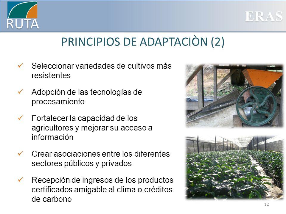 PRINCIPIOS DE ADAPTACIÒN (2)