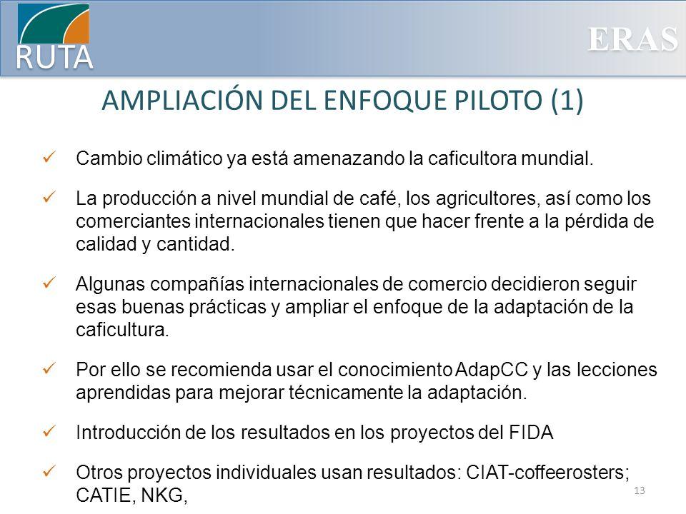 AMPLIACIÓN DEL ENFOQUE PILOTO (1)