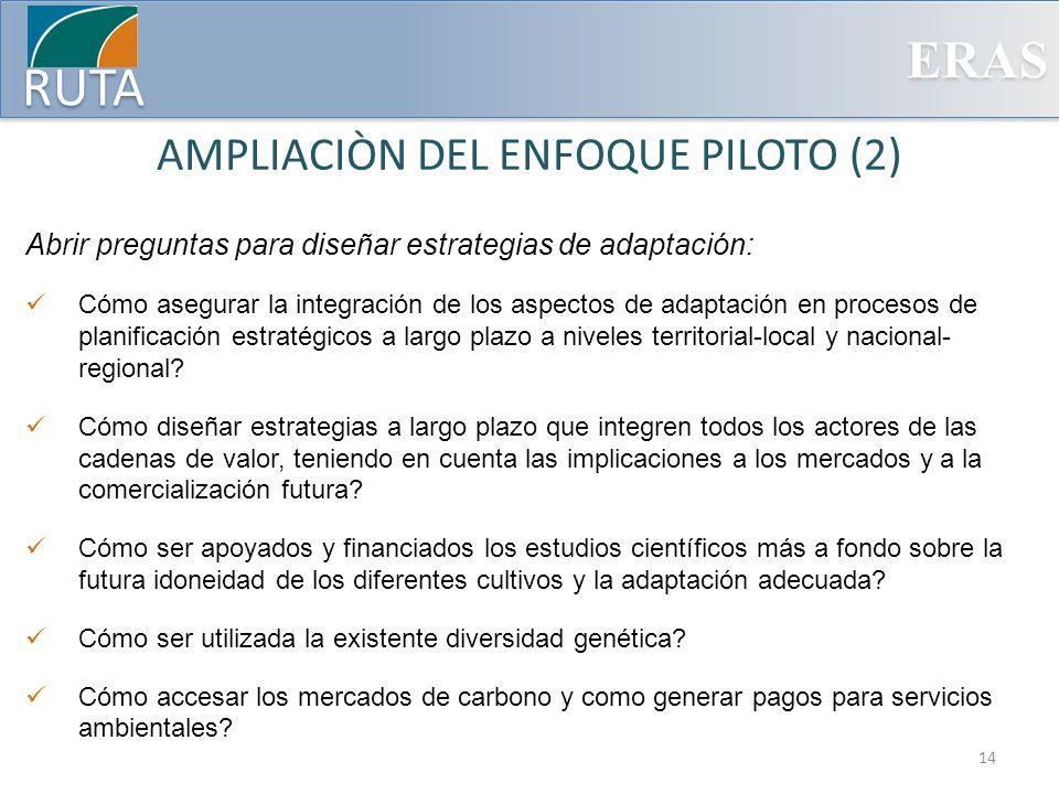 AMPLIACIÒN DEL ENFOQUE PILOTO (2)