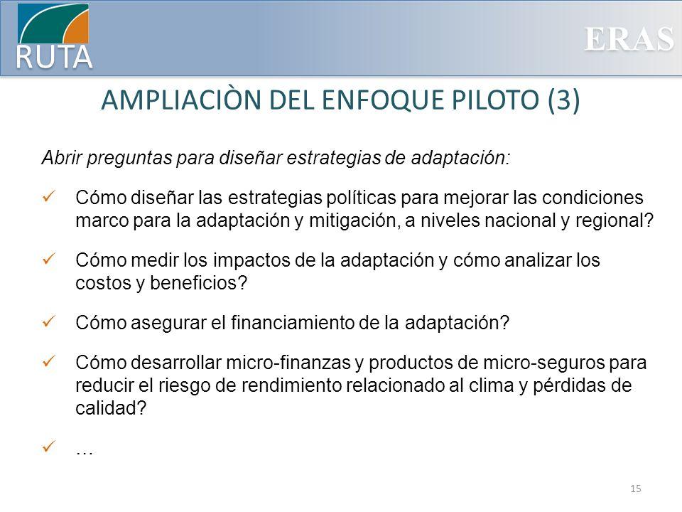 AMPLIACIÒN DEL ENFOQUE PILOTO (3)