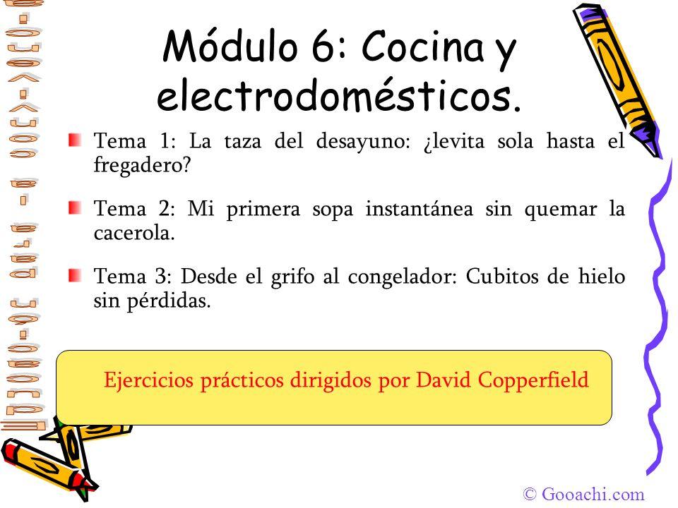 Módulo 6: Cocina y electrodomésticos.