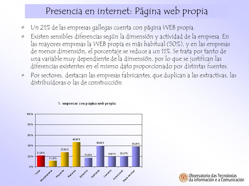 Presencia en internet: Página web propia