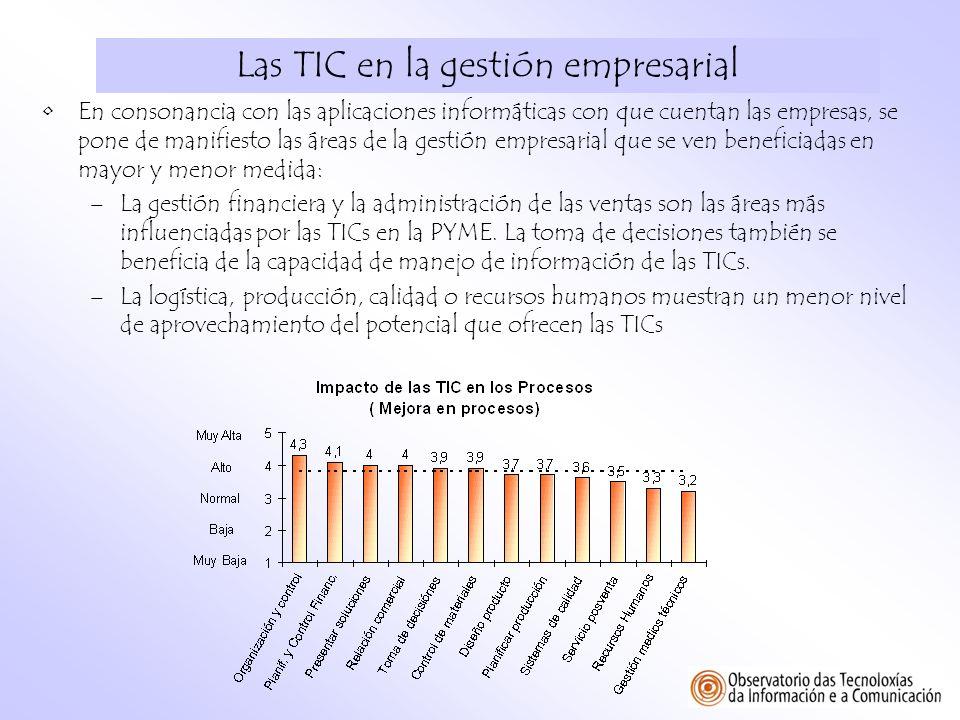 Las TIC en la gestión empresarial