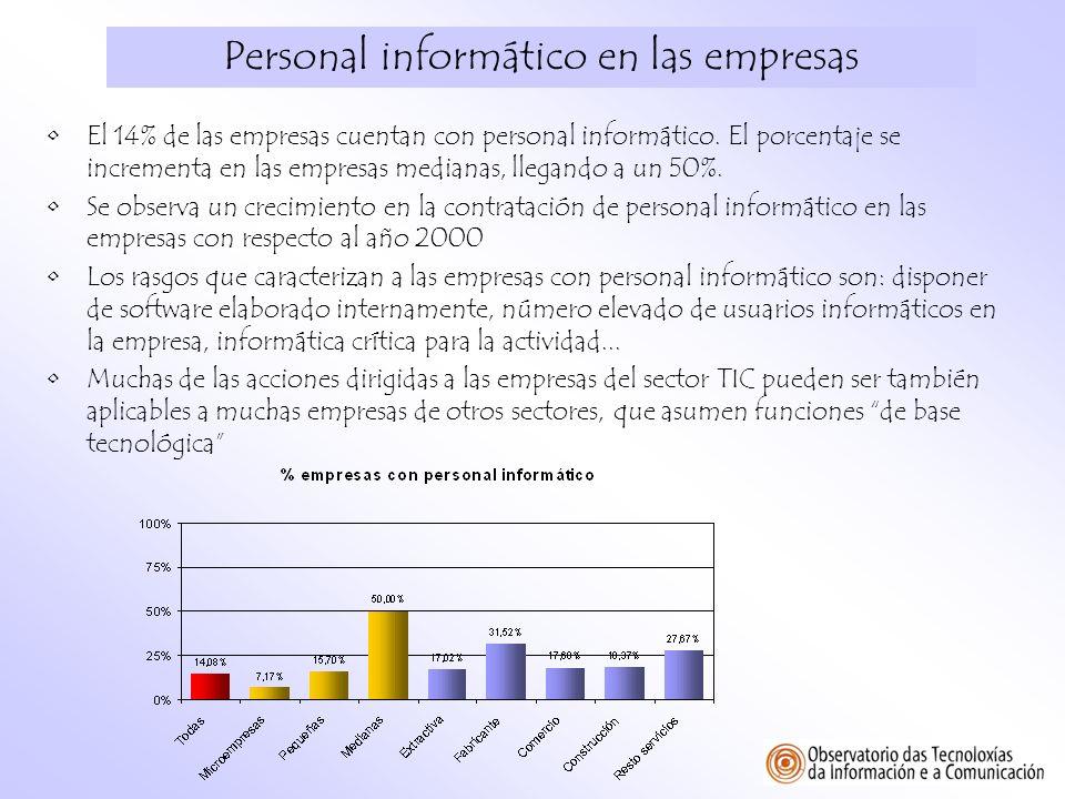Personal informático en las empresas