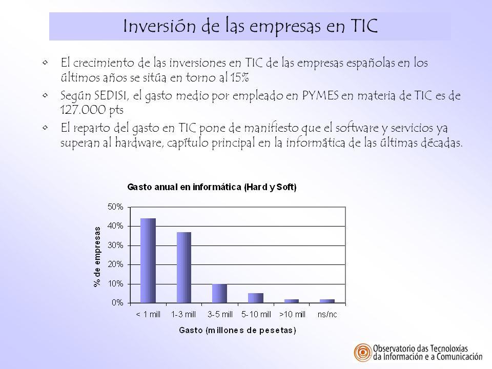 Inversión de las empresas en TIC