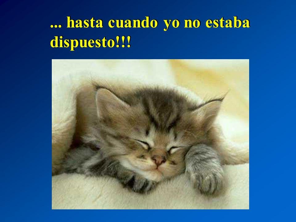 ... hasta cuando yo no estaba dispuesto!!!