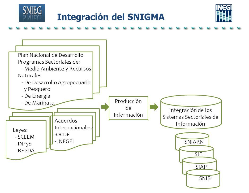 Integración del SNIGMA