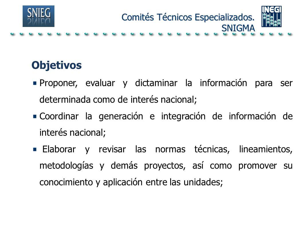 Objetivos Comités Técnicos Especializados. SNIGMA