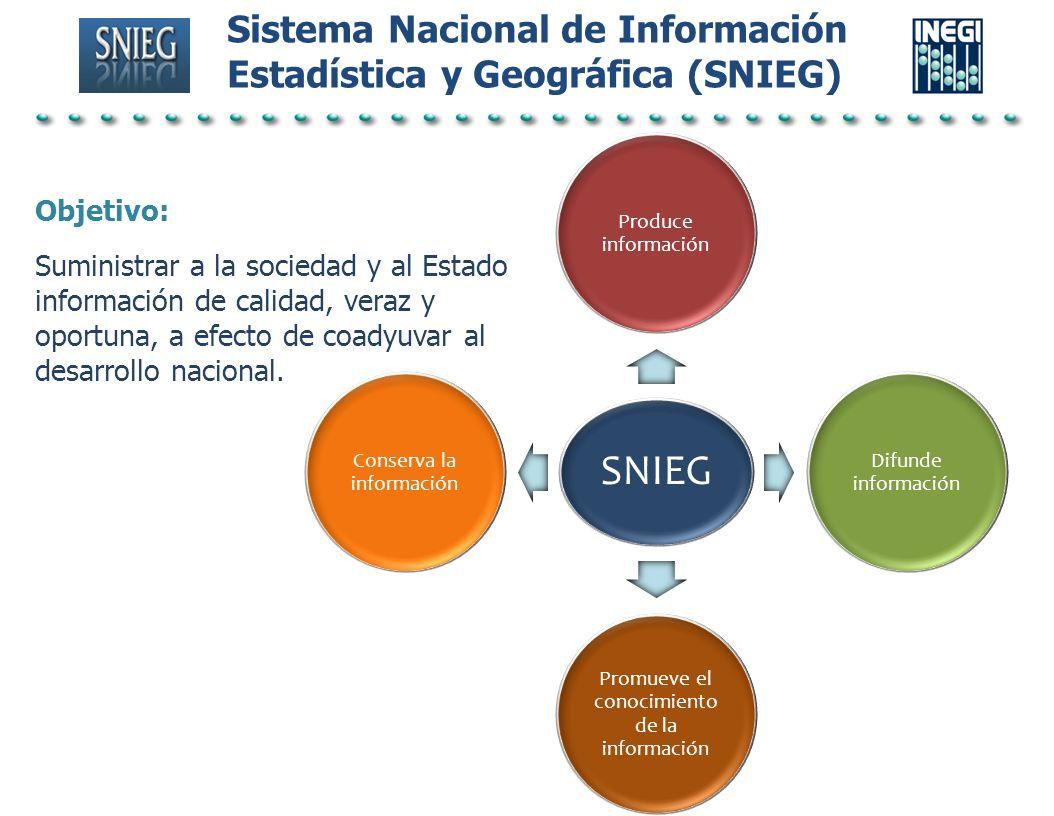 SNIEG Sistema Nacional de Información Estadística y Geográfica (SNIEG)