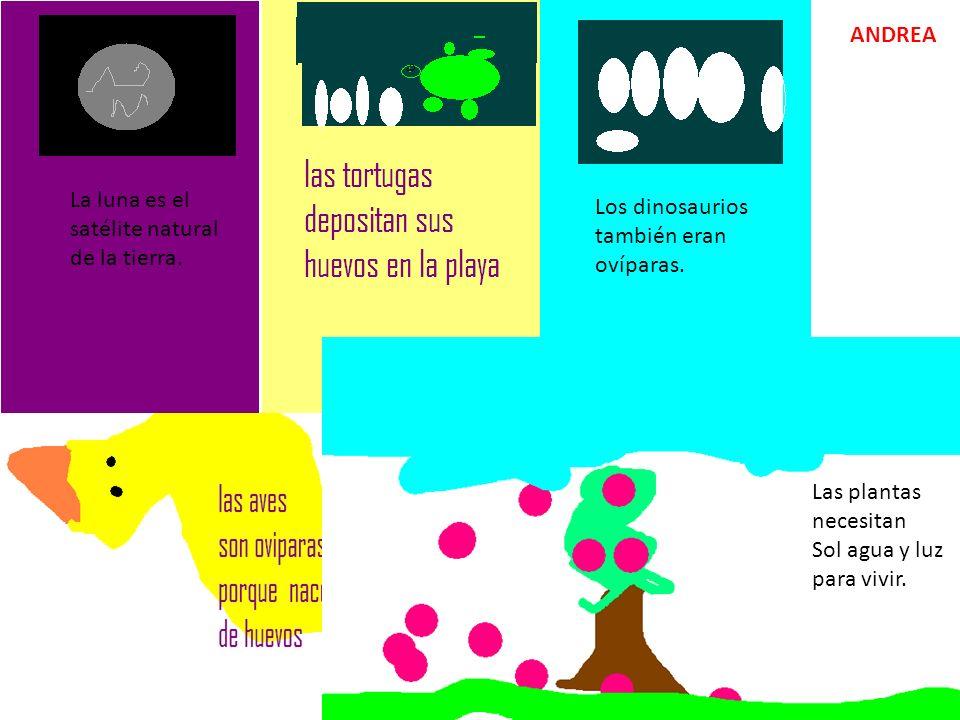 ANDREA La luna es el satélite natural de la tierra. Los dinosaurios también eran ovíparas. Las plantas necesitan.