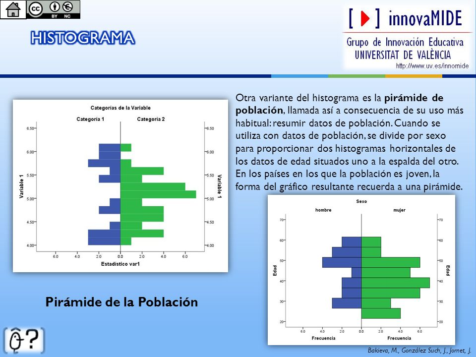 Pirámide de la Población