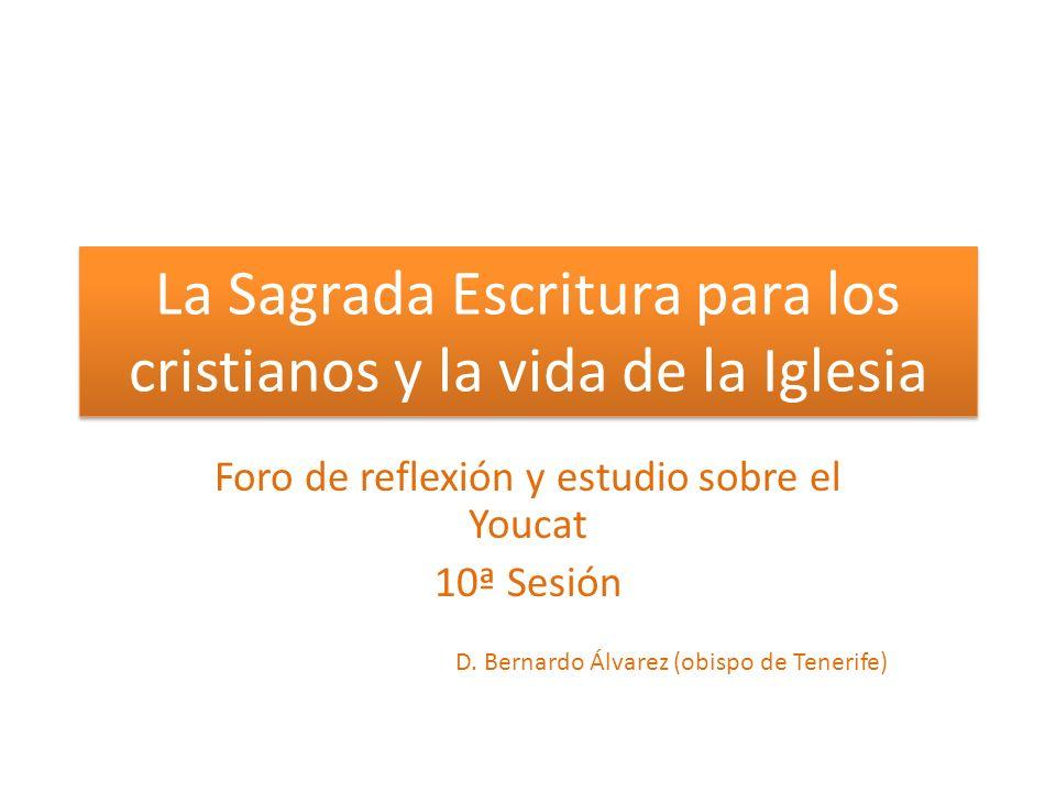 La Sagrada Escritura para los cristianos y la vida de la Iglesia