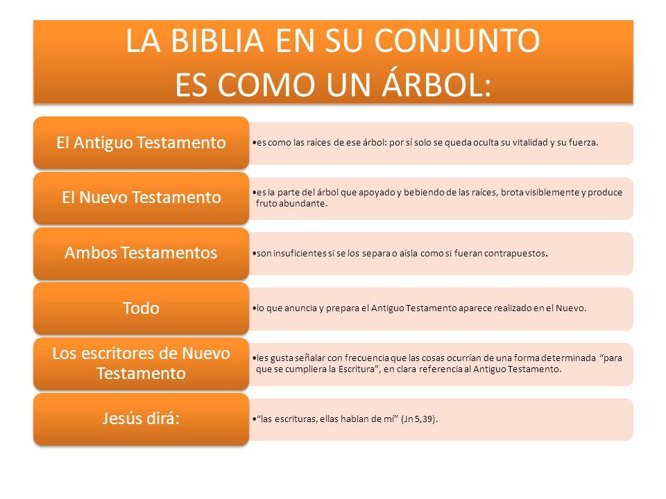 LA BIBLIA EN SU CONJUNTO ES COMO UN ÁRBOL: