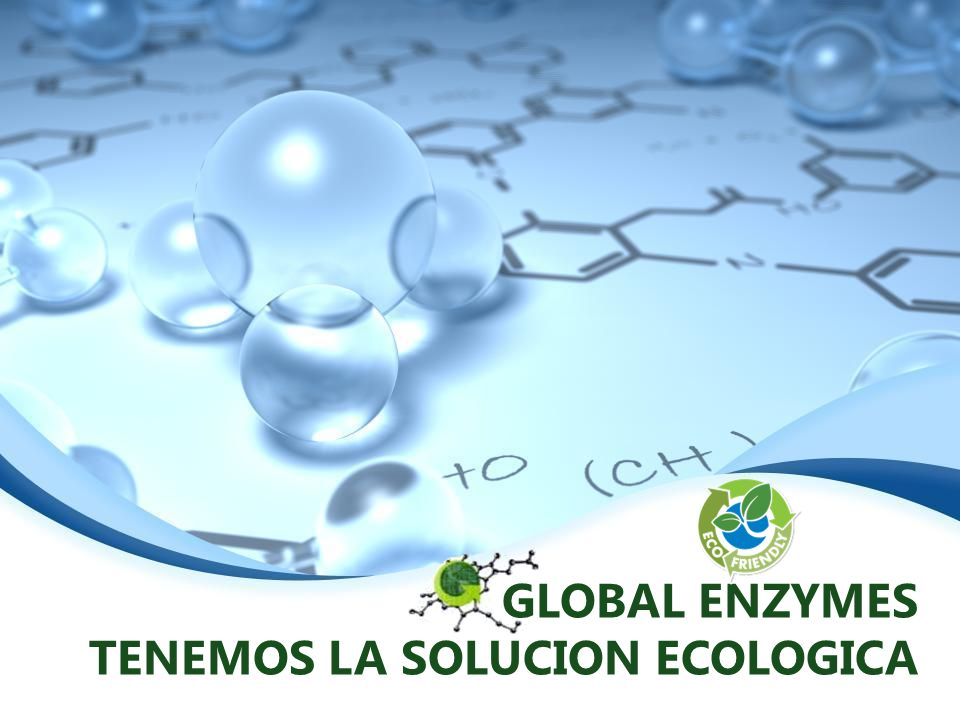 GLOBAL ENZYMES TENEMOS LA SOLUCION ECOLOGICA