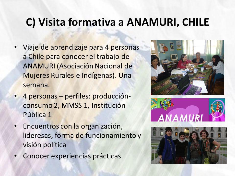 C) Visita formativa a ANAMURI, CHILE