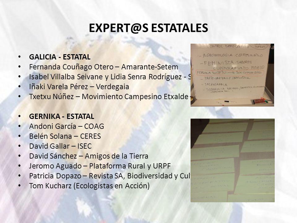 EXPERT@S ESTATALES GALICIA - ESTATAL