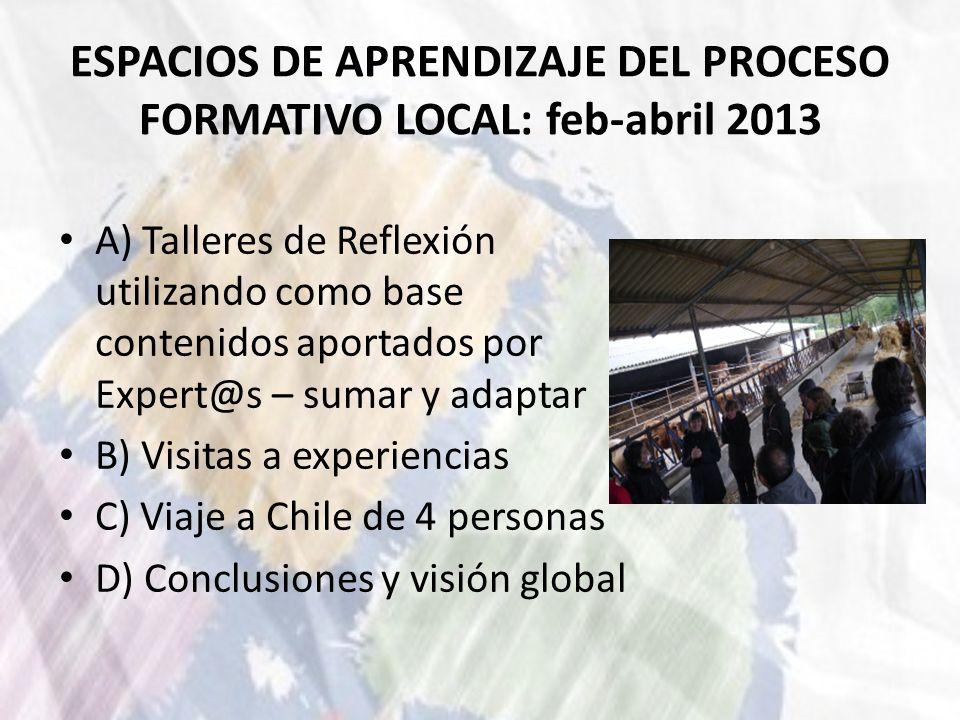 ESPACIOS DE APRENDIZAJE DEL PROCESO FORMATIVO LOCAL: feb-abril 2013