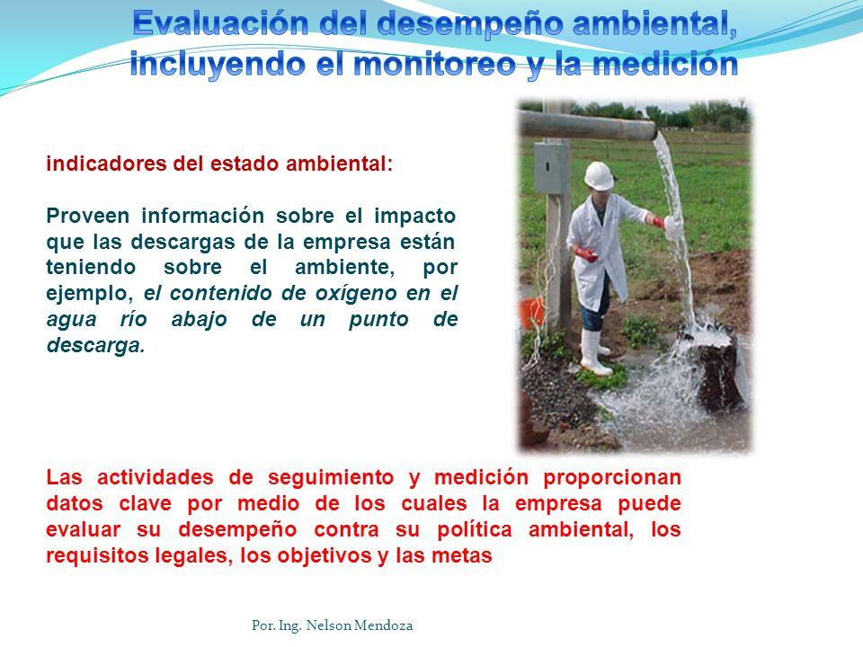 Evaluación del desempeño ambiental, incluyendo el monitoreo y la medición