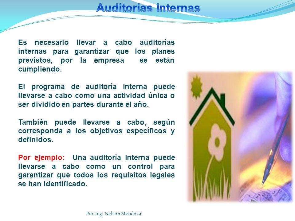Auditorías Internas Es necesario llevar a cabo auditorías internas para garantizar que los planes previstos, por la empresa se están cumpliendo.