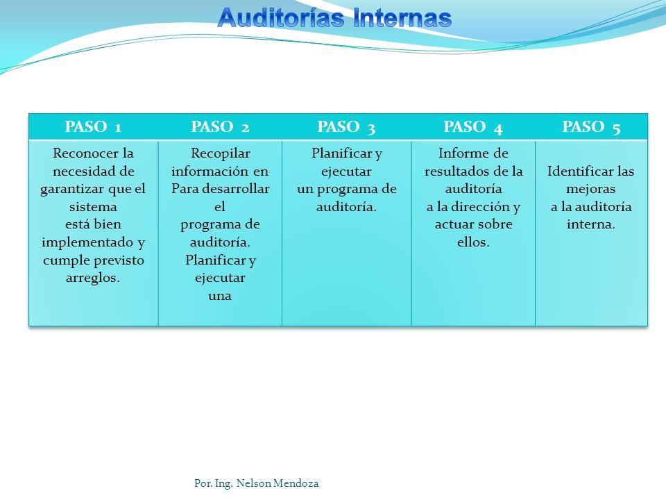 Auditorías Internas PASO 1 PASO 2 PASO 3 PASO 4 PASO 5