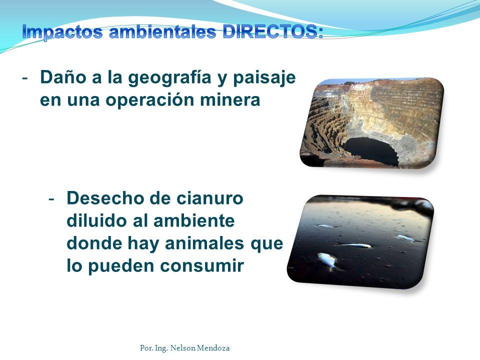 Impactos ambientales DIRECTOS: