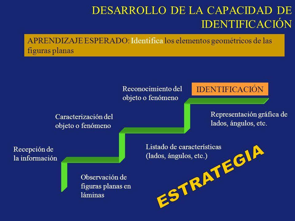 DESARROLLO DE LA CAPACIDAD DE IDENTIFICACIÓN