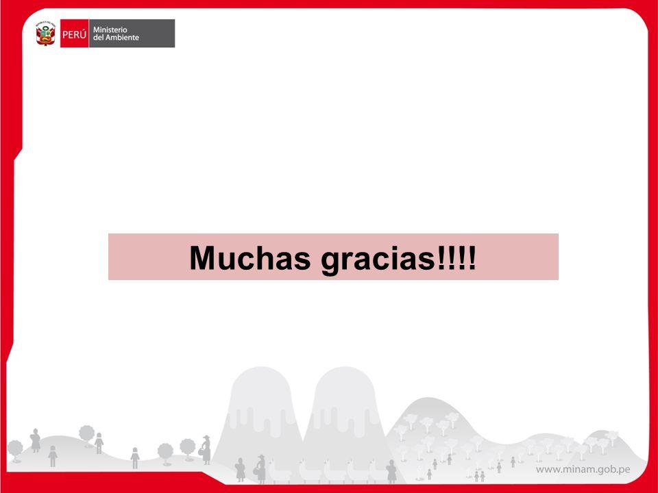 Muchas gracias!!!! 12