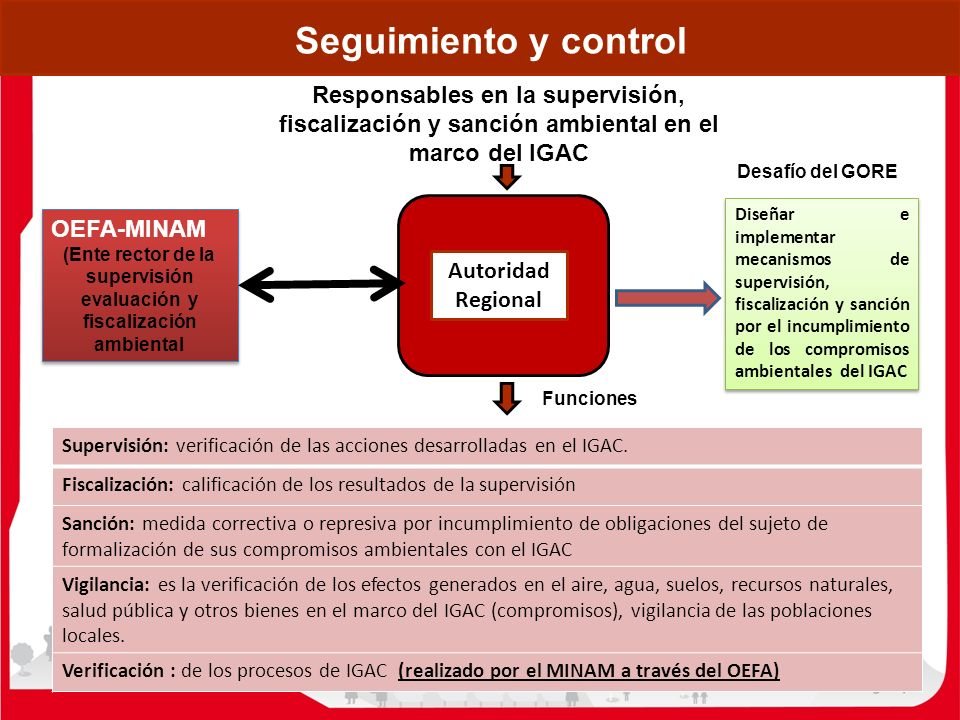 (Ente rector de la supervisión evaluación y fiscalización ambiental