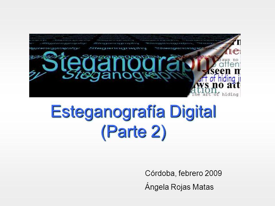 Esteganografía Digital (Parte 2)