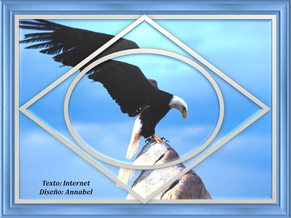 Y quien sabe… tal vez sean ellas, las propias circunstancias, las que nos hacen descubrir que tenemos alas para volar…