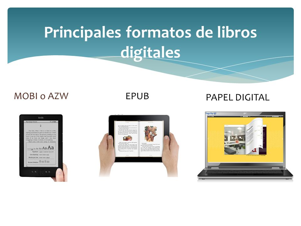 Principales formatos de libros digitales