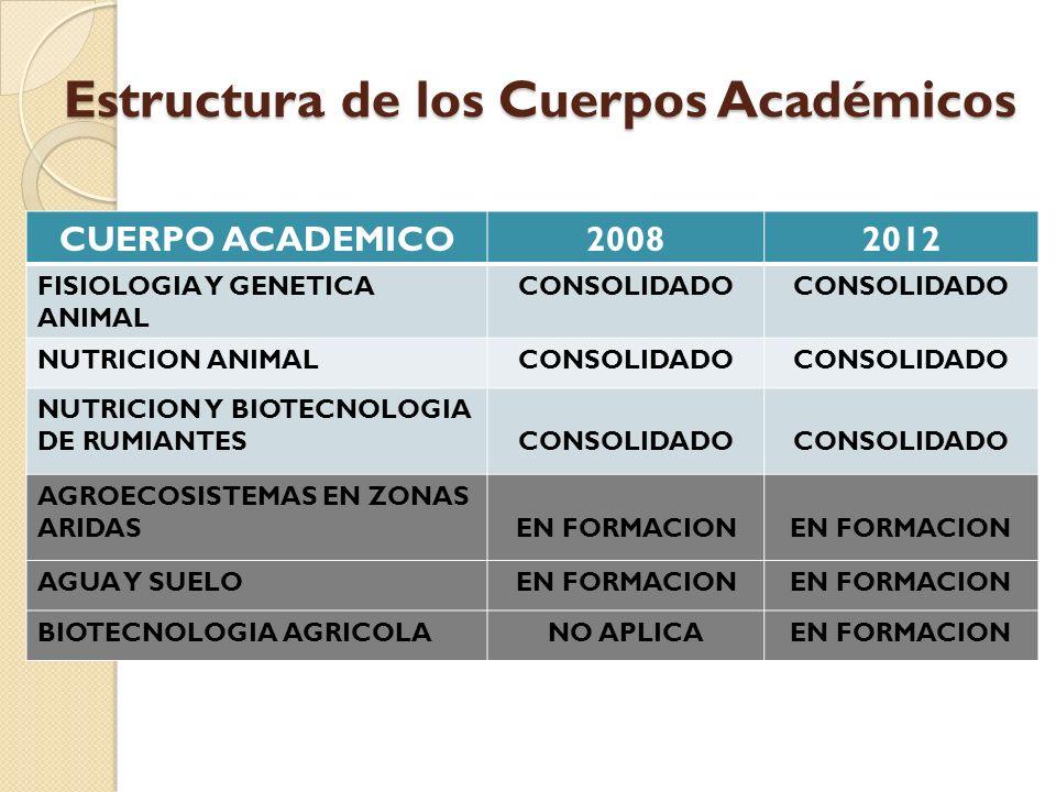 Estructura de los Cuerpos Académicos