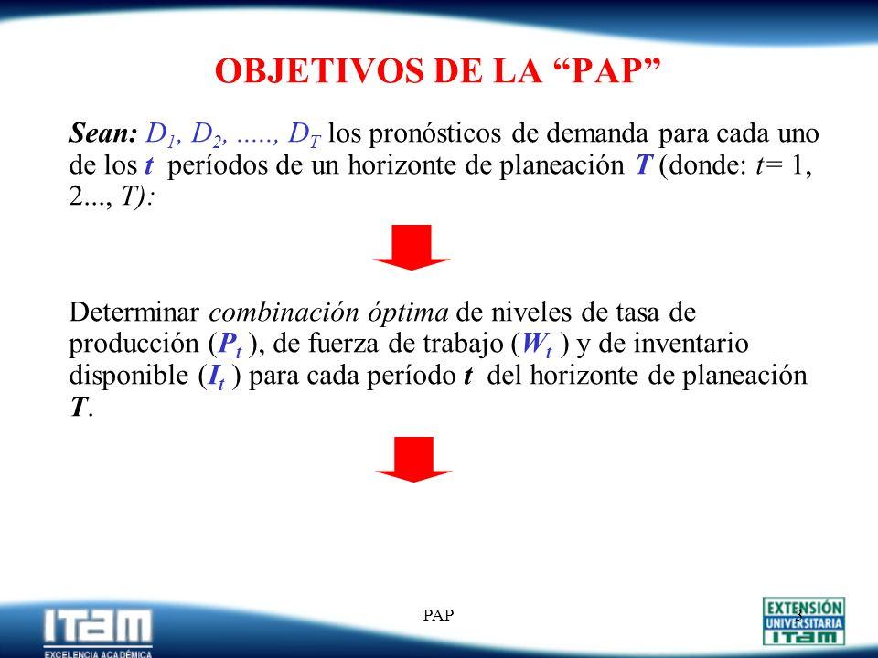 OBJETIVOS DE LA PAP
