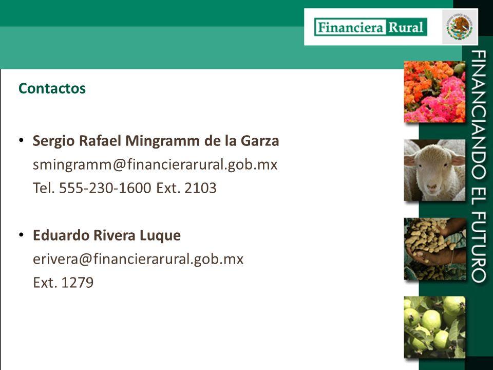 Contactos Sergio Rafael Mingramm de la Garza. smingramm@financierarural.gob.mx. Tel. 555-230-1600 Ext. 2103.
