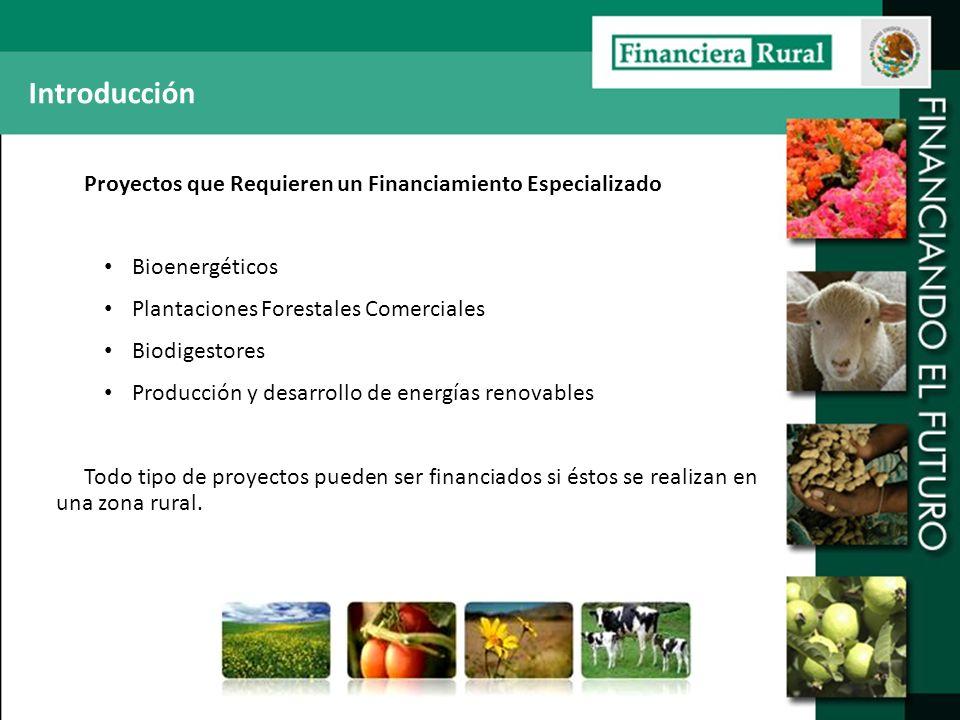 Introducción Proyectos que Requieren un Financiamiento Especializado