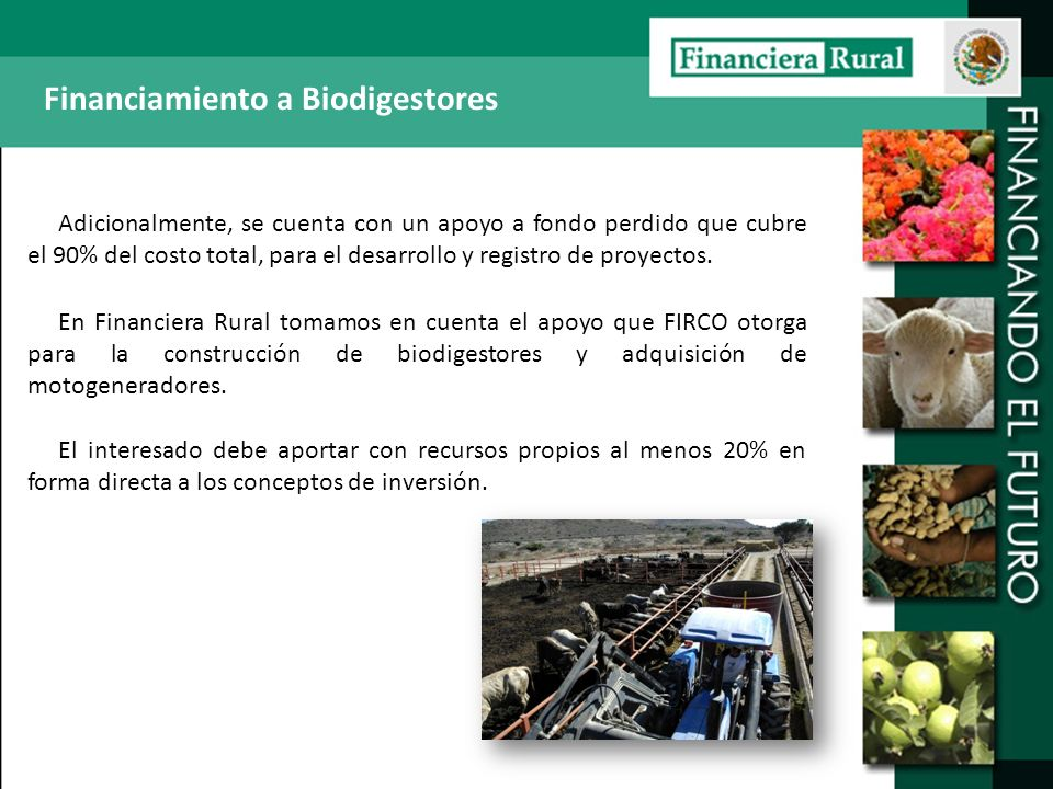 Financiamiento a Biodigestores