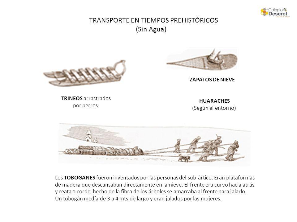 TRANSPORTE EN TIEMPOS PREHISTÓRICOS (Sin Agua)