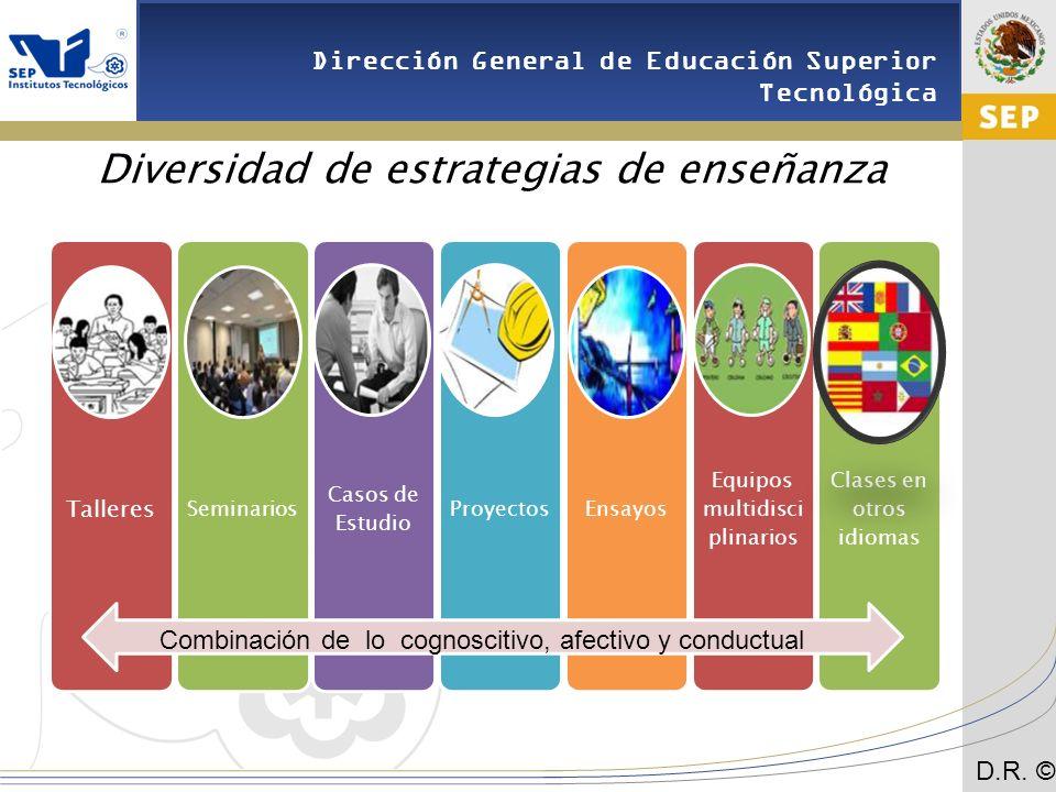 Diversidad de estrategias de enseñanza