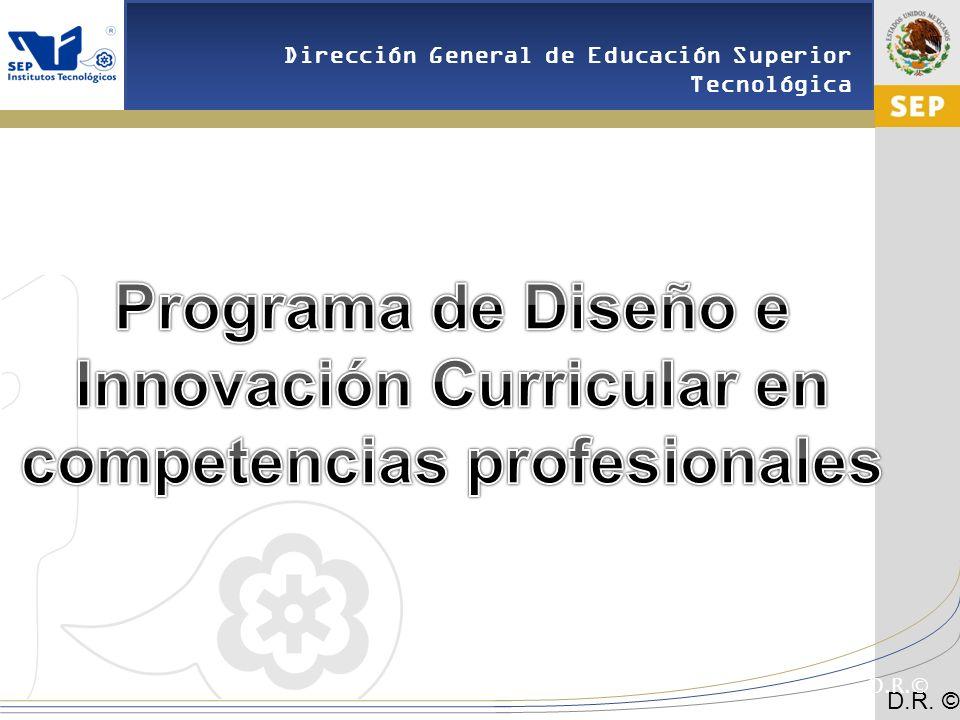 Programa de Diseño e Innovación Curricular en competencias profesionales