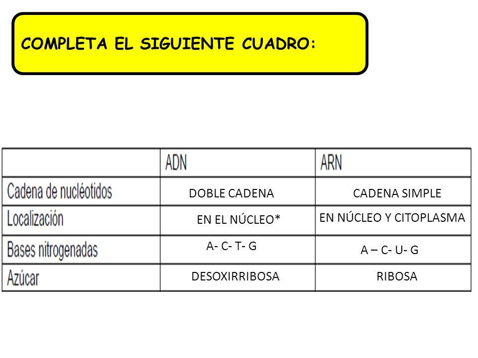 COMPLETA EL SIGUIENTE CUADRO: